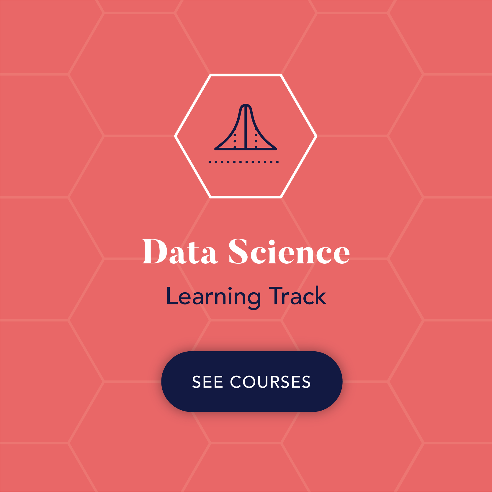 Inkblot Academy Courses Data Science.png