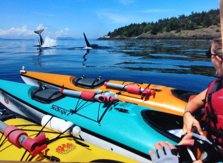 San Juan Kayak Expeditions With