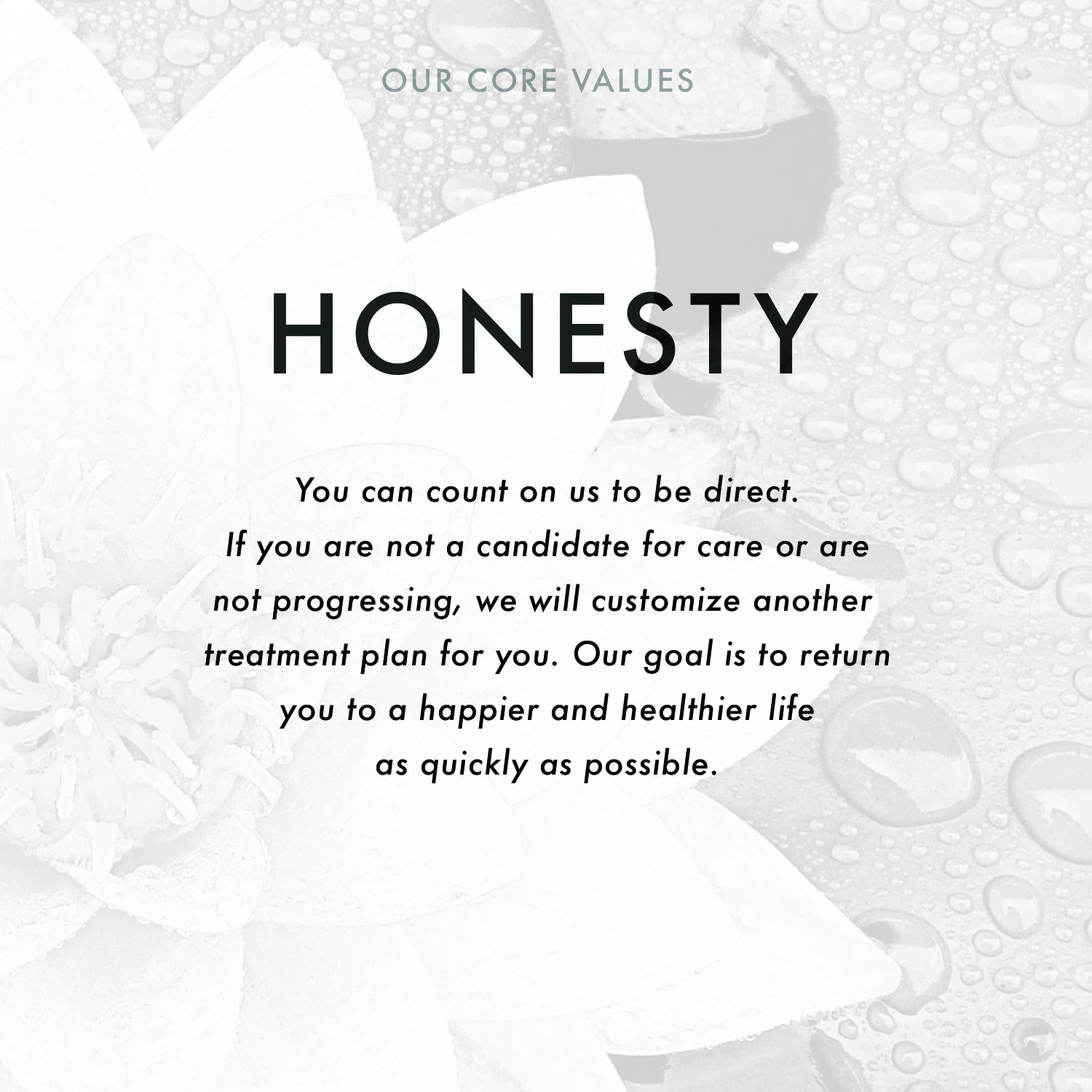 (2)Core_HONESTY.jpg