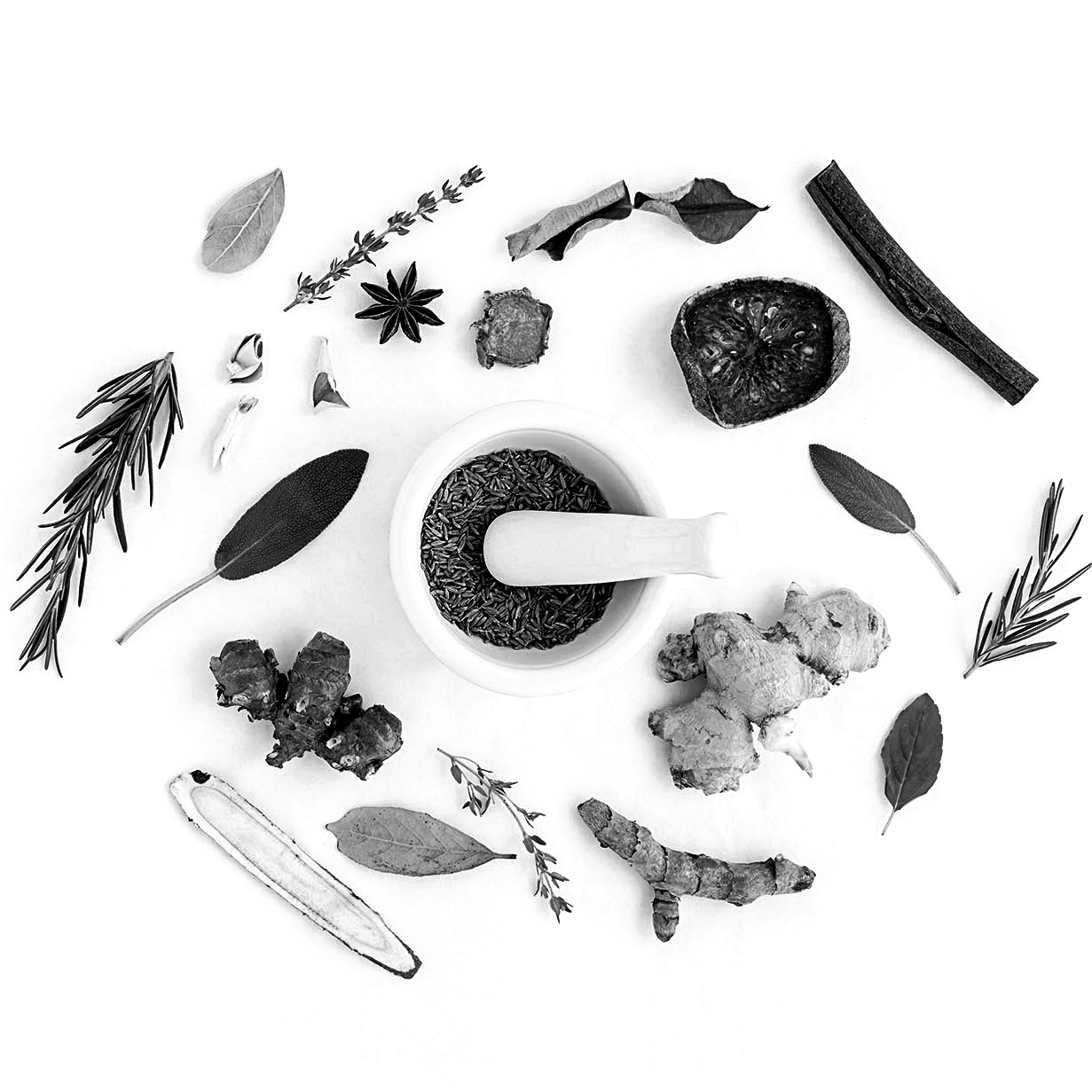 functional-medicine_the-integrated-brain-and-spine-center-for-functional-neurology-and-medicine_integrated-physicians-medical-group_wellness_holistic_care_treatments_natural-b&w(1).png