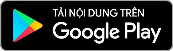 vn-goog.png