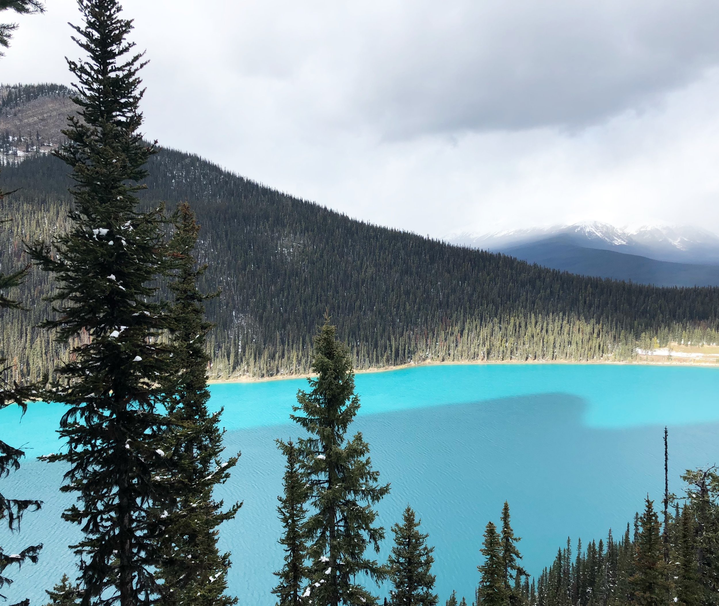LAKE LOUISE ACTUALLY LOOKS LIKE THIS LOL WHAT IS THE EARTH