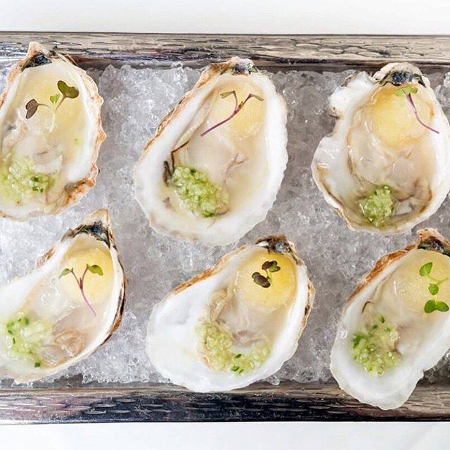 Is there anything more summer in New England than oysters?! Grab these Spearpoint oysters from @sorellinaboston and enjoy their unique topping of micro mustard, Meyer lemon granita, and cucumber mignonette ⚡️ #boston #bostonfoodie #bostonfood #bostonfoodgram #bostoneats #foodiesinboston #bostoneats #microgreens #organic #healthyliving #health #cleaneating #wellness #wholefood #eatplants #bostonrestaurants #oysters #newengland #summerfood #foodblogger #foodblog #foodstagram #bestfoodfeed #eatboston #microgreens #bestfoodinboston