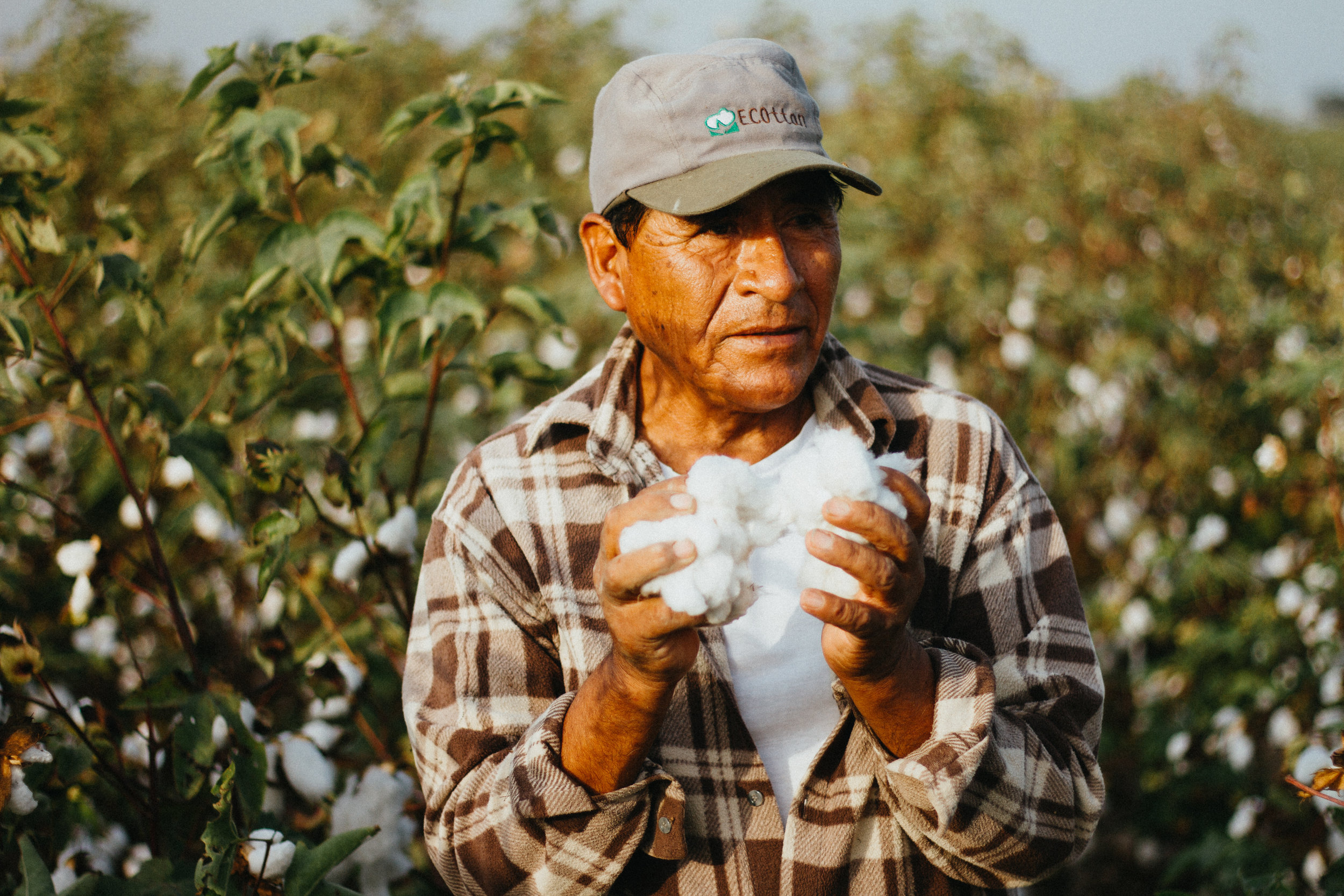 - SUPPORTING MAYSON MEANS SUPPORTING THE HEALTH AND WELL-BEING OF FARMERS LIKE LEONCIO AND THEIR FAMILIES. ORGANIC CLOTHES MADE FROM ORGANIC CROPS MEANS NO PESTICIDES, NO INSECTICIDES, AND NO CHEMICALS MAKING THEIR WAY INTO THEIR BODY OR INTO THEIR HOMES. USDA/GOTS/EU CERTIFIED ORGANIC.