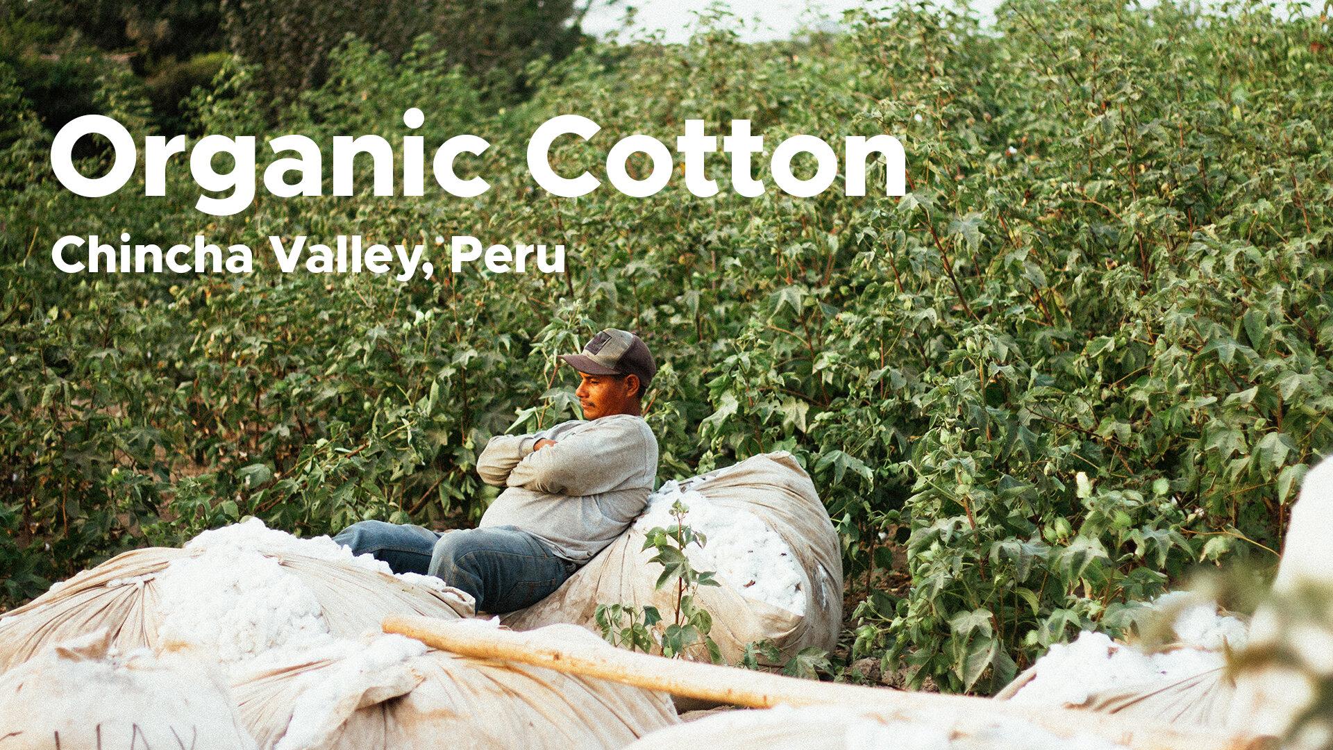 organiccotton.jpg