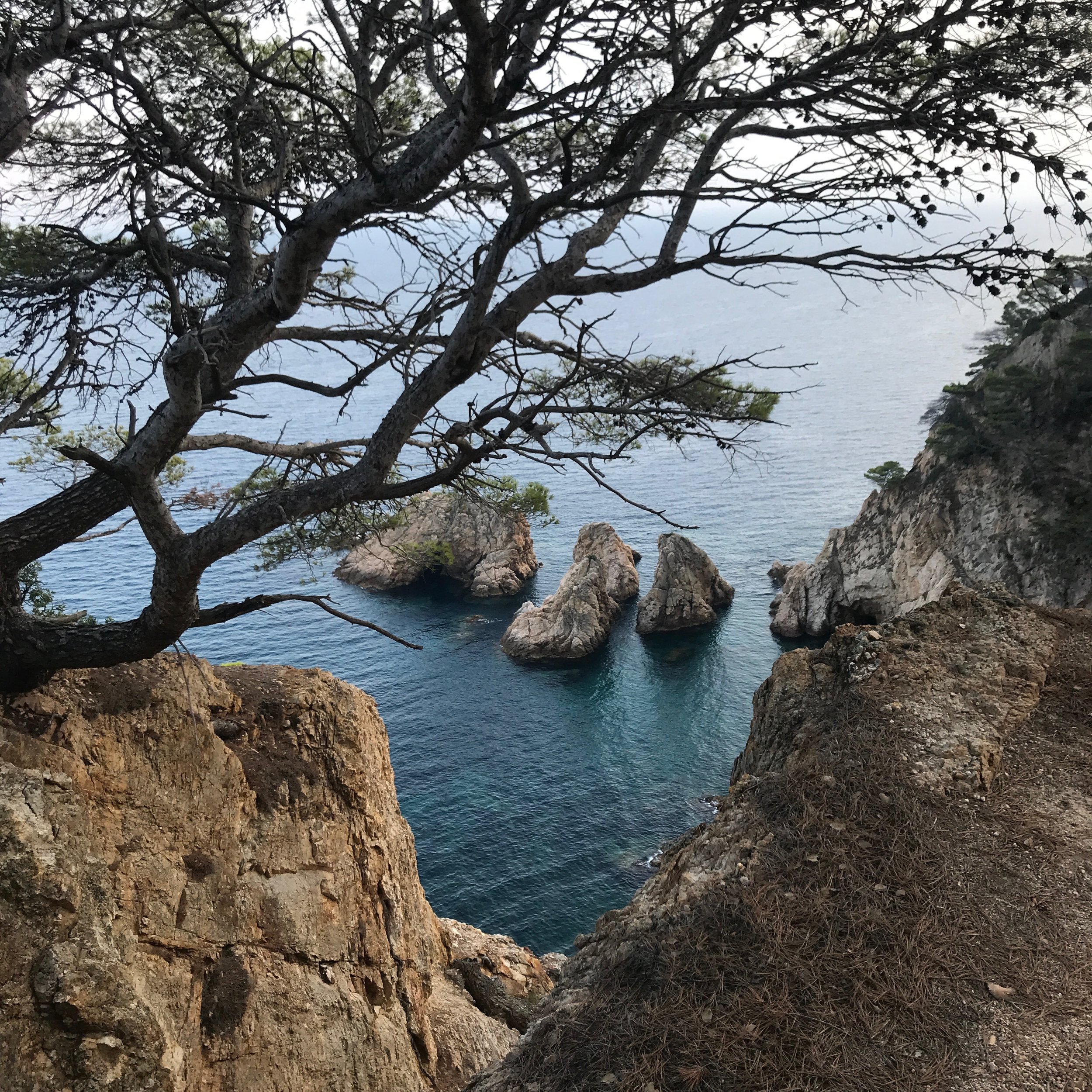 View of a  cala  from the Cami de Ronda hiking path.