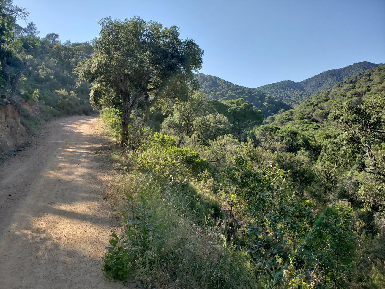 Inland hike from Tossa to the Puig de Cadiretes.