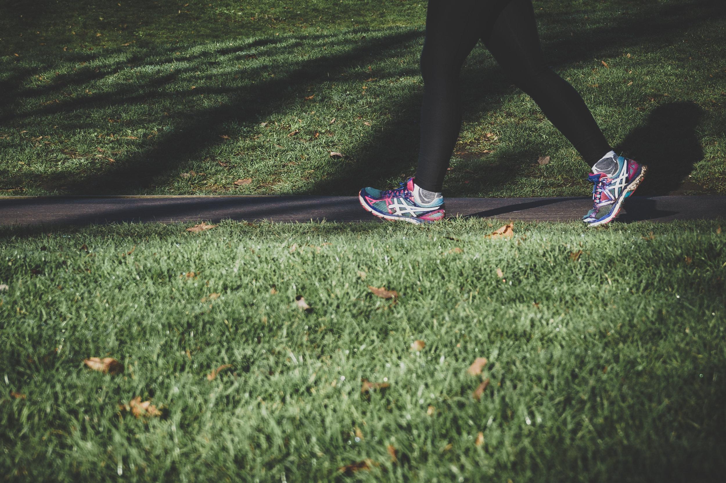 pleasure walking exercise program walking