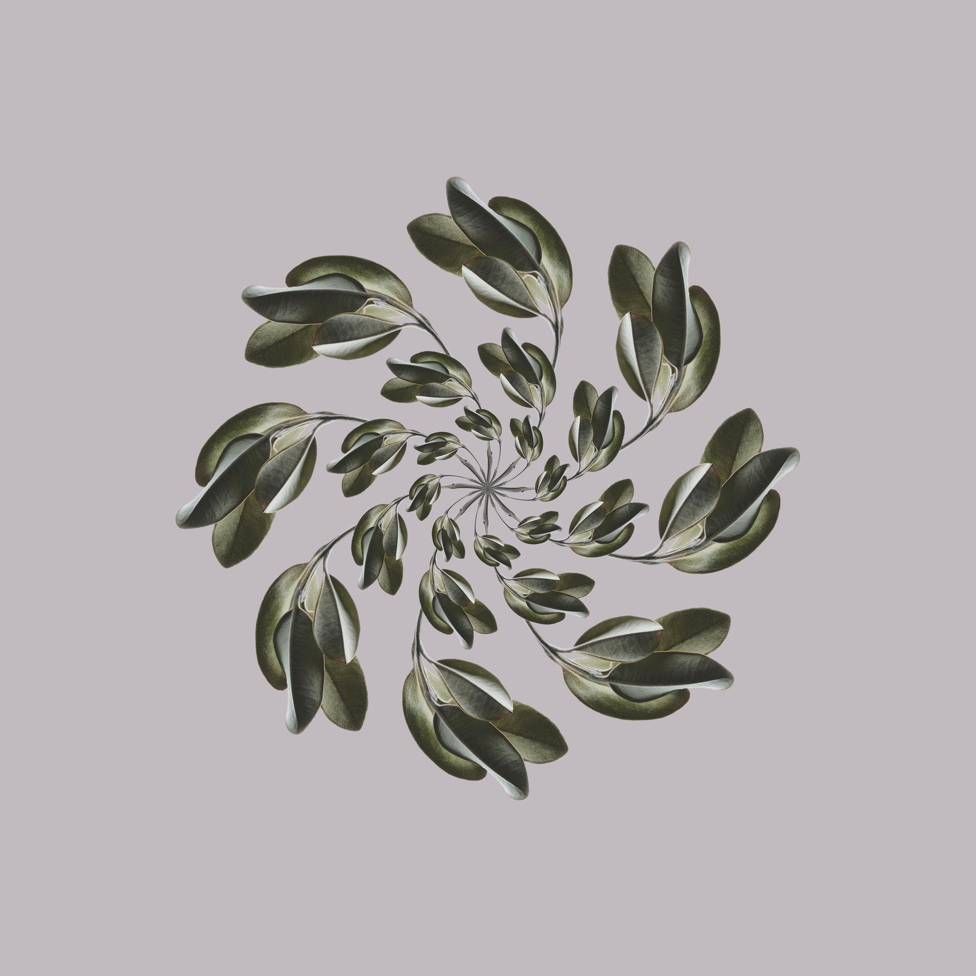 Bronze-Spin.jpg