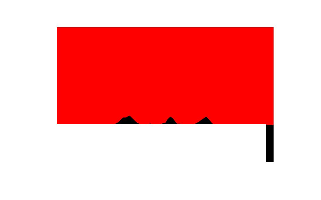 DriveNationLogo2color.png