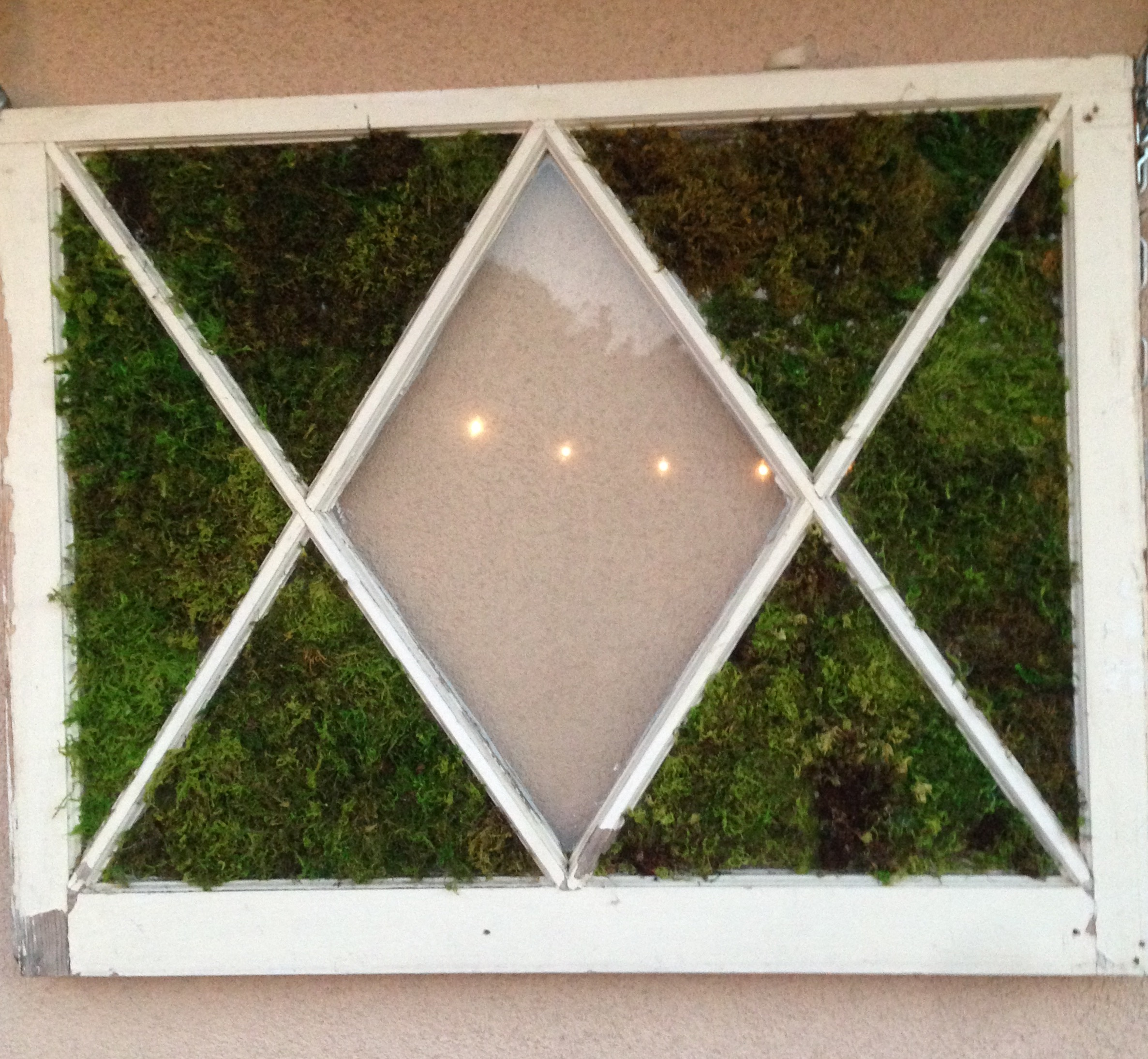 MOssy Window - Did you know that you can spray store bought moss with water every so often if it starts to get brown and dry? The moisture will bring it back to green. I love our little living window.