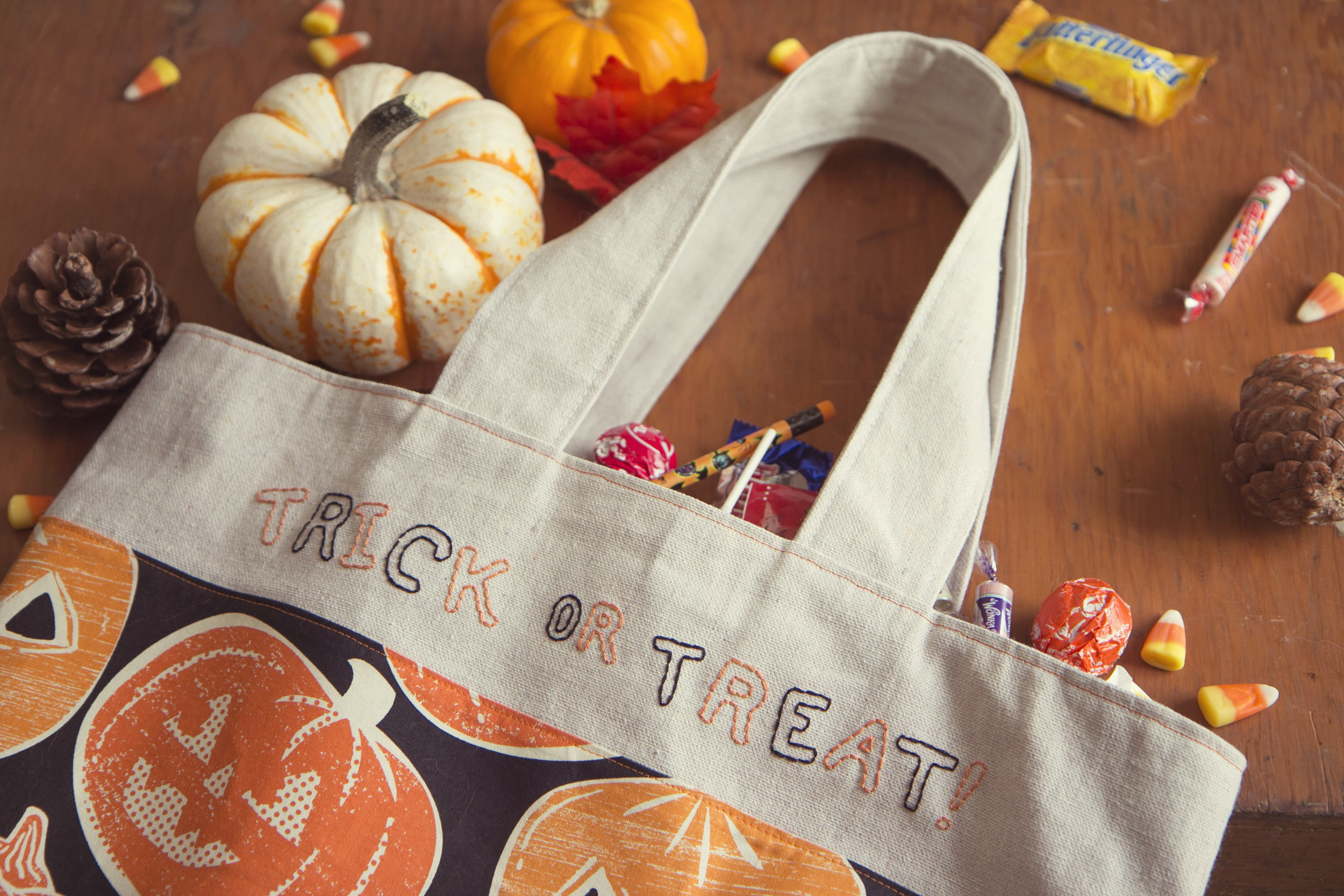 Trick or Treat Bags14