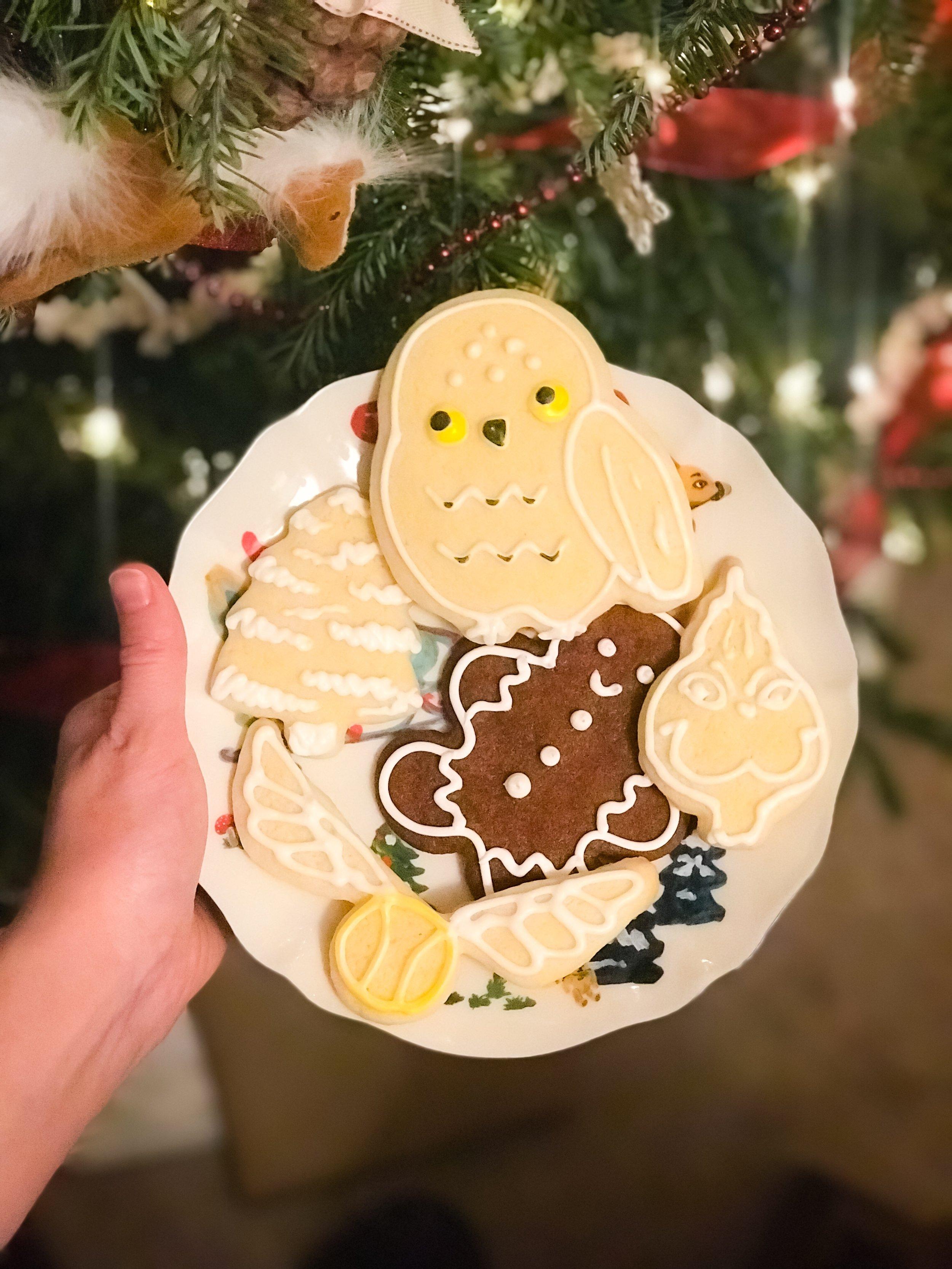 So Santa got Hedwig in his cookies.