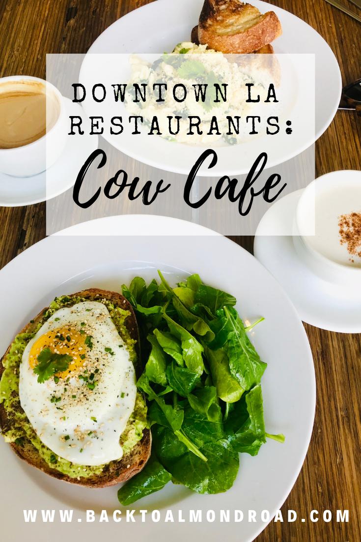 Downtown LA Restaurants Cow Cafe