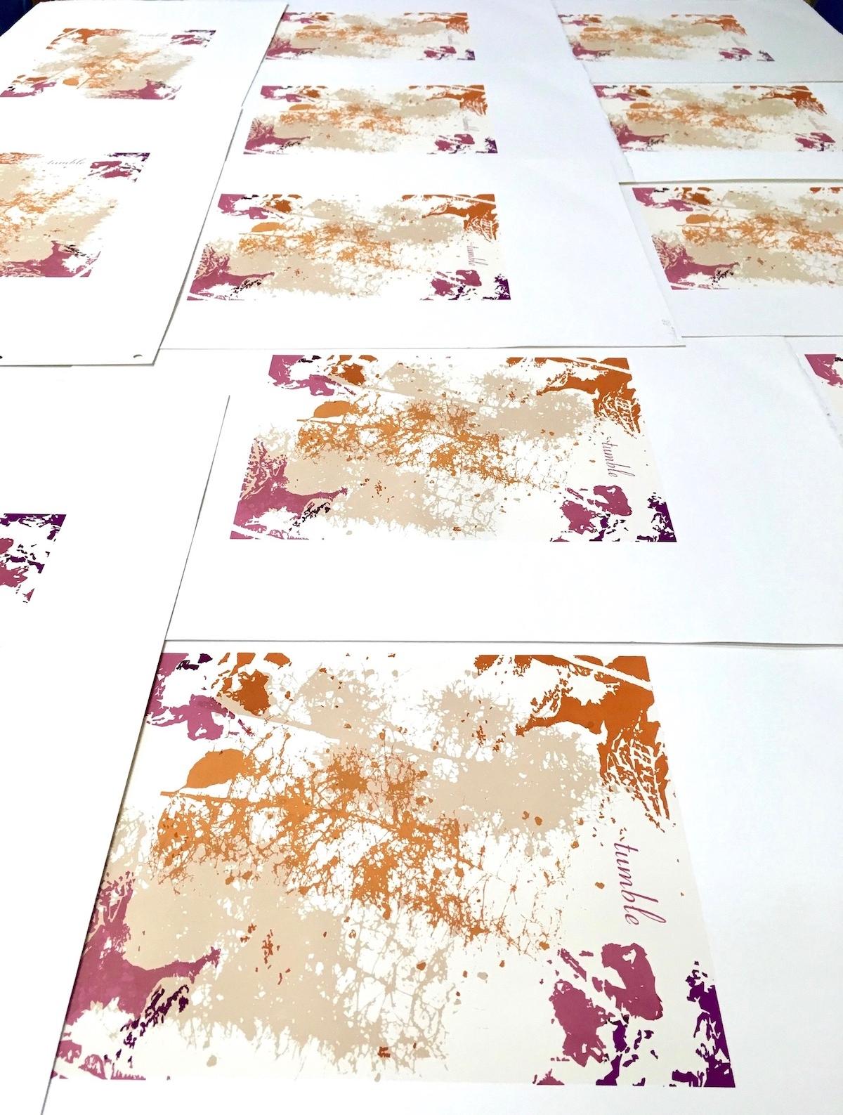 "Limited Edition & Unique Fine Art Prints - ""float, tumble, drift"" is an 8.5"" x 11"" screenprint on Arches 88"