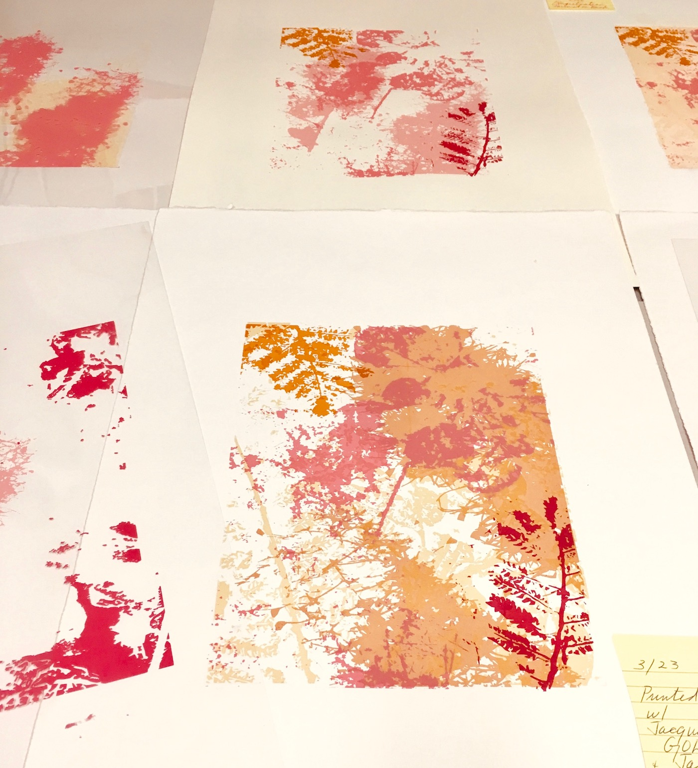 Water based printmaking - Affordable, environmentally responsible art produced in small editions by hand.