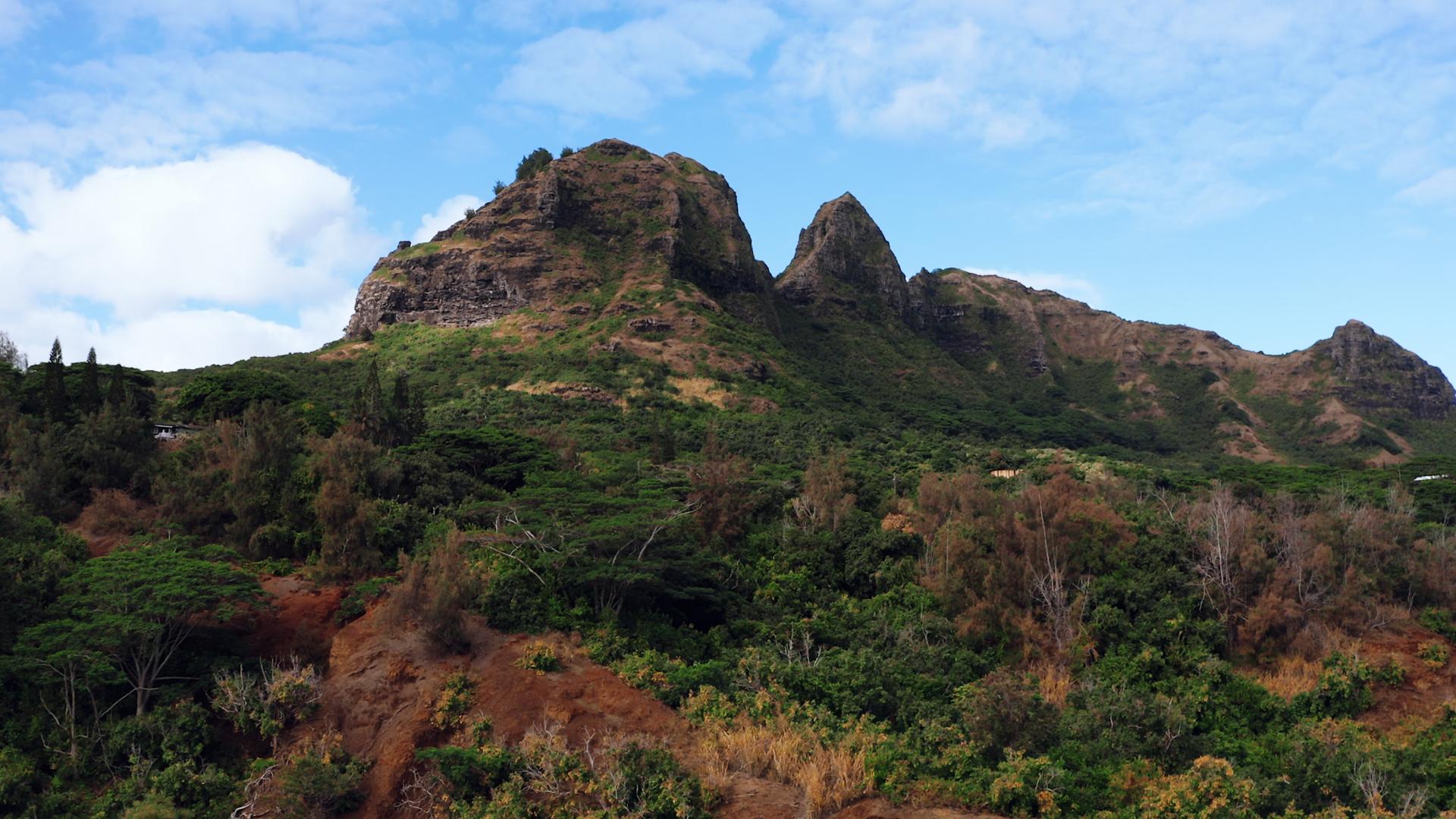 hawaii luts.00_00_23_03.Still005.jpg