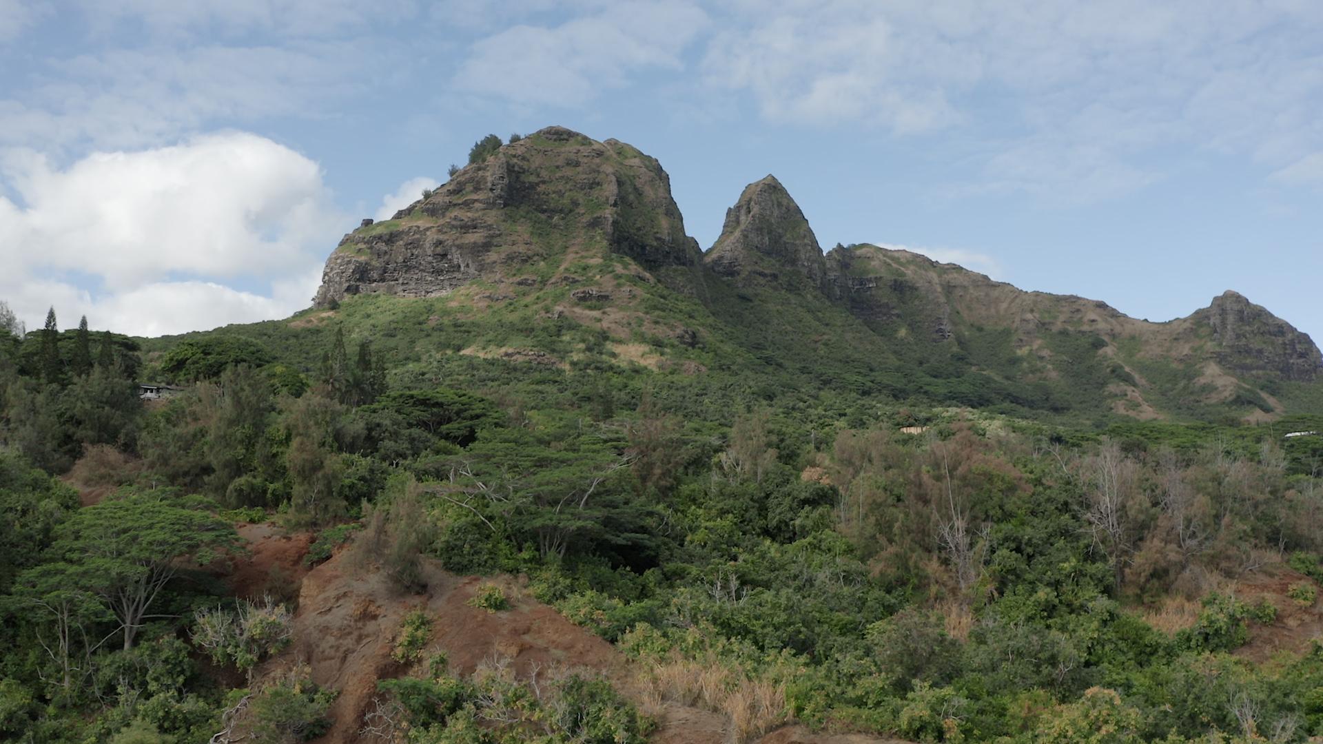 hawaii luts.00_00_23_03.Still006.jpg