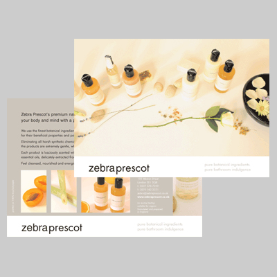 Ecographic-health-ZebraPrescotflyer.jpg