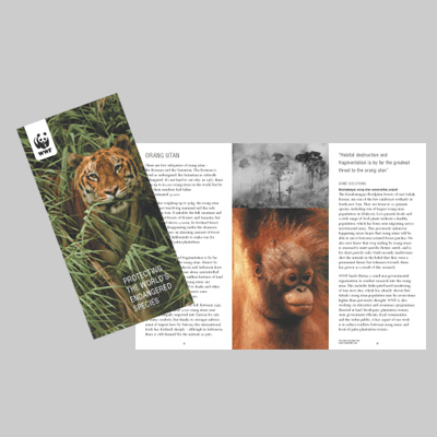 Ecographic-environmental-WWF-UK-endangeredspeciesleaflet.jpg