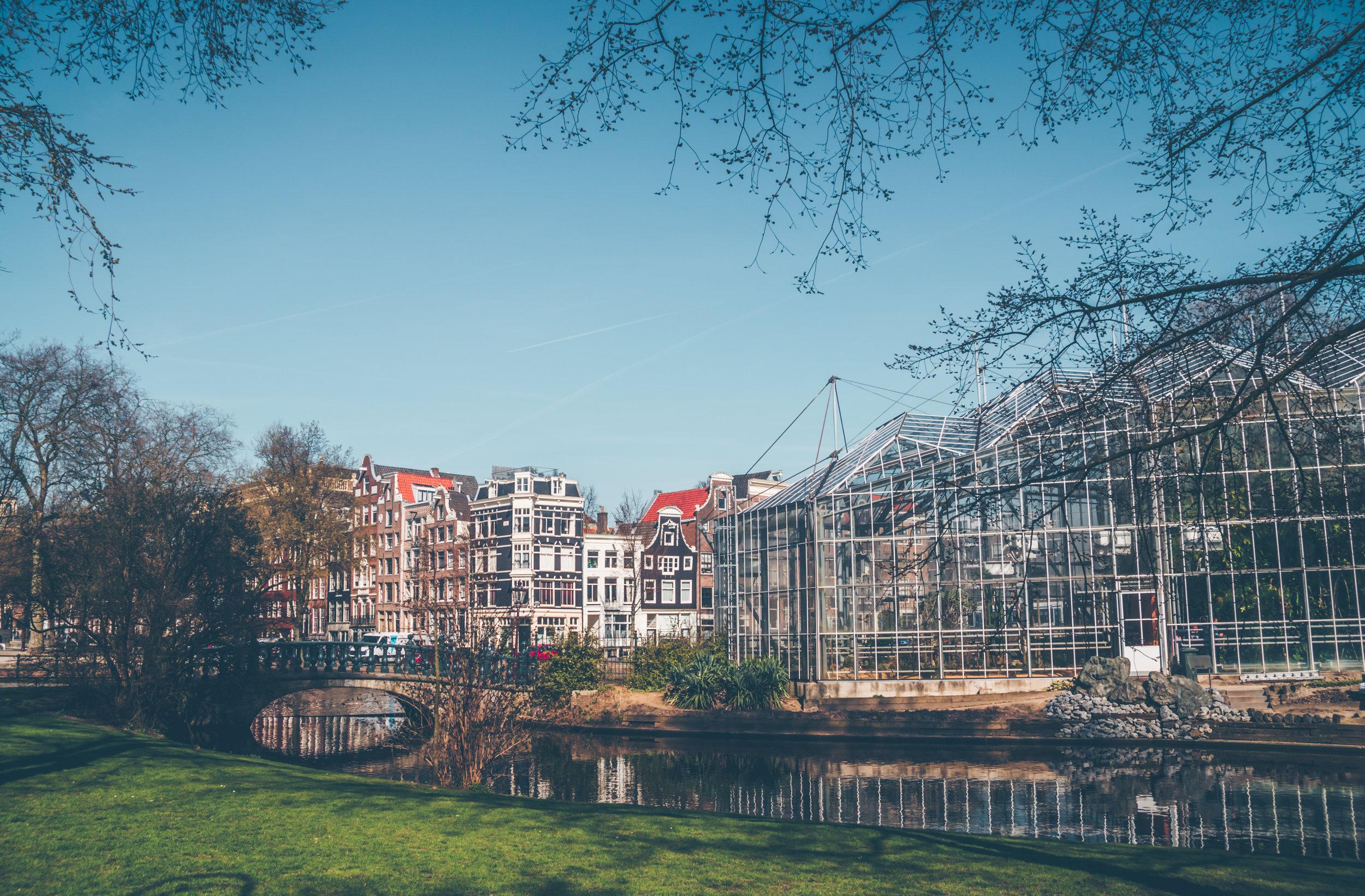 Images of Amsterdam-Nadine Burzler (5 of 29).jpg
