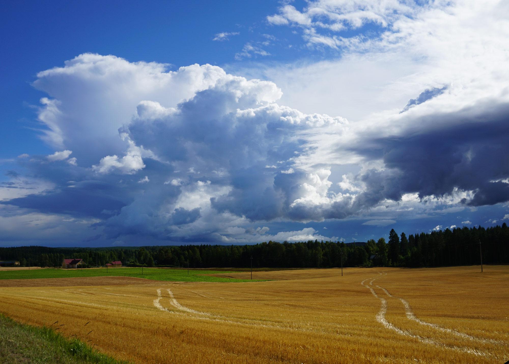 ek-positiivisuus-viljapelto-pilvet-mokilla.jpg