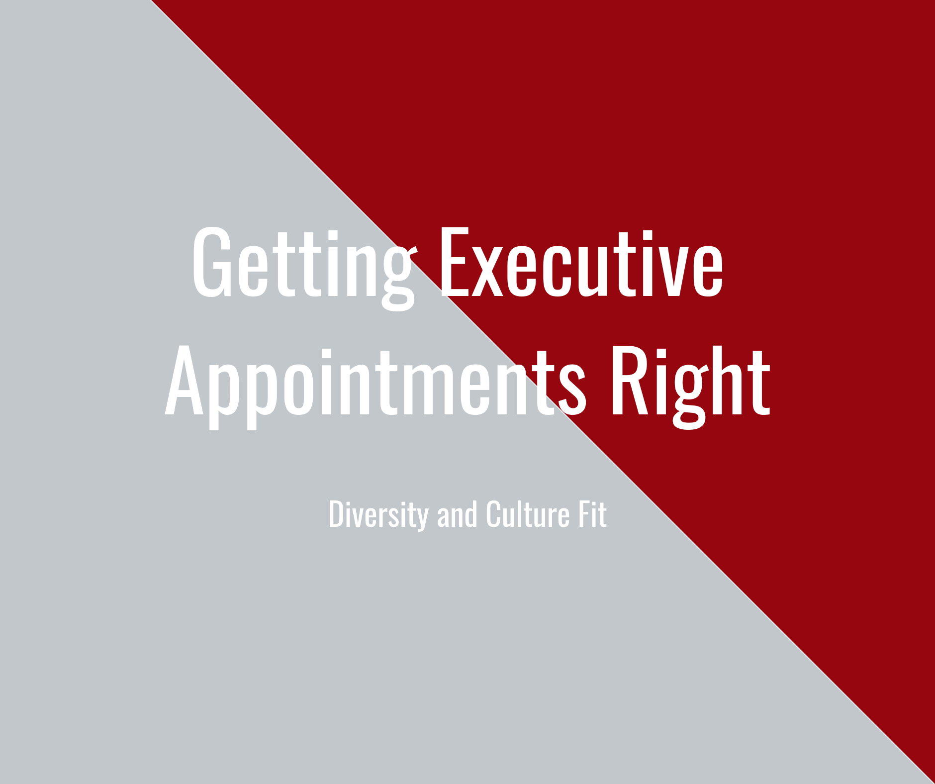 Getting Executive Appointments Right - Diversity and Culture Fit.png