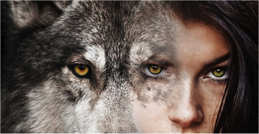 Women-Who-Run-with-Wolves.png