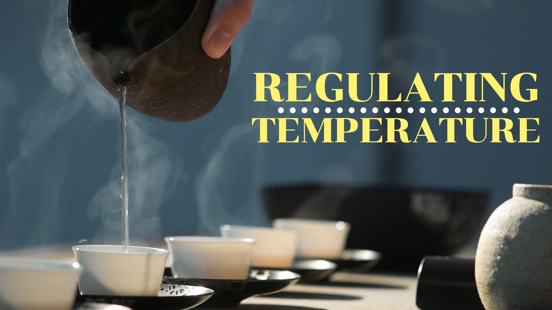 Regulating Temperature.jpg