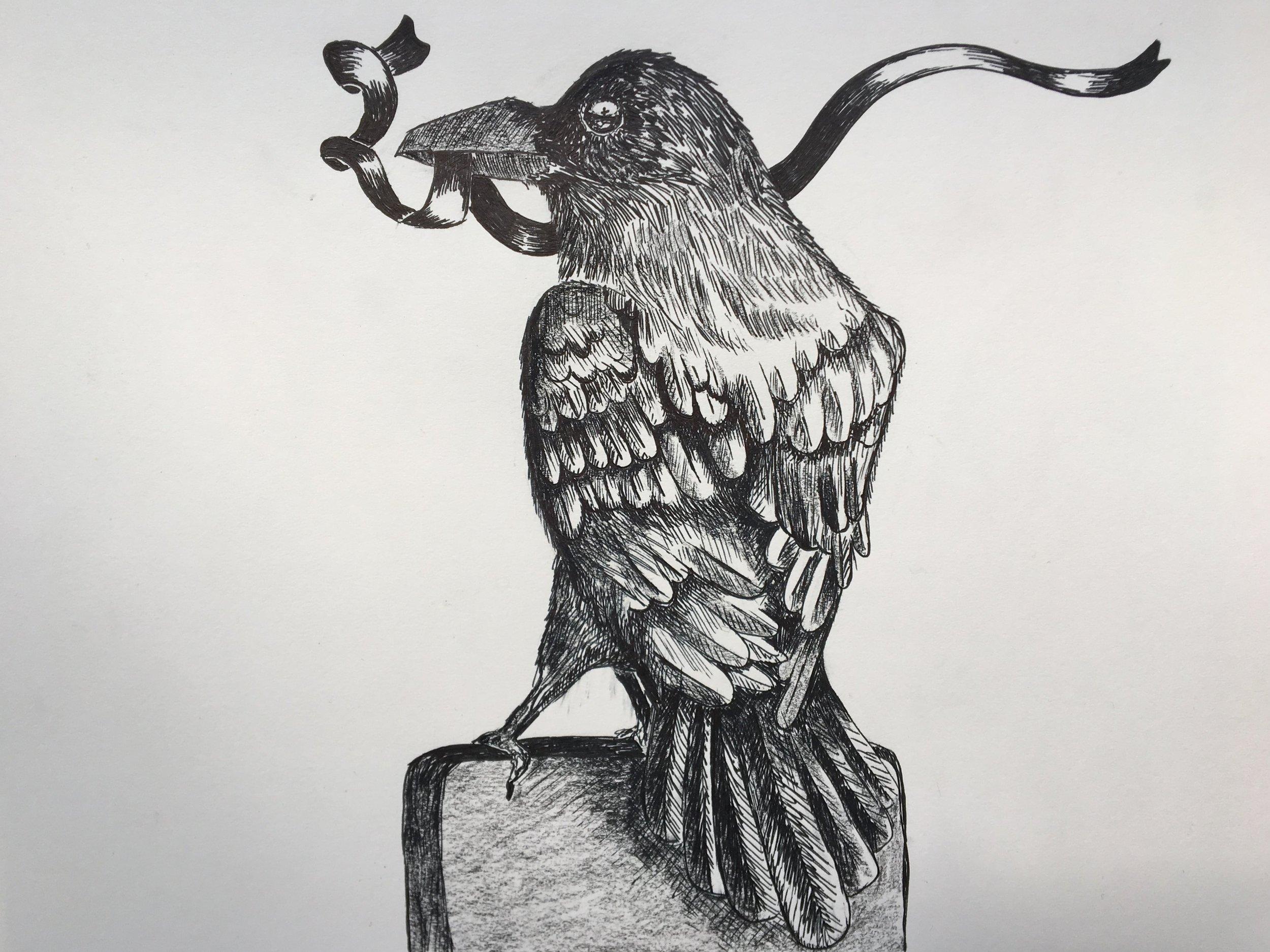Illustration+for+Crow+Girl+-+credit+Amy+Shepheard+.jpg