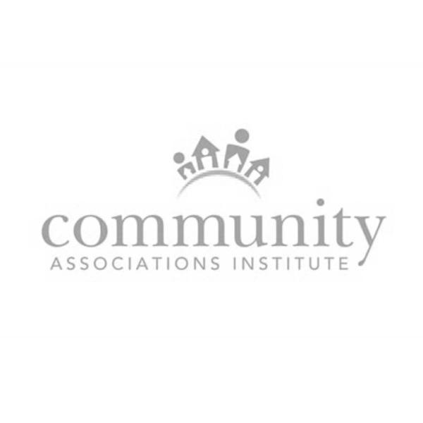 CAI-Logo-Gray.jpg
