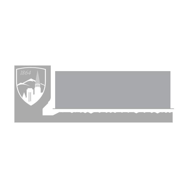 UD-Sturm-Logo.png