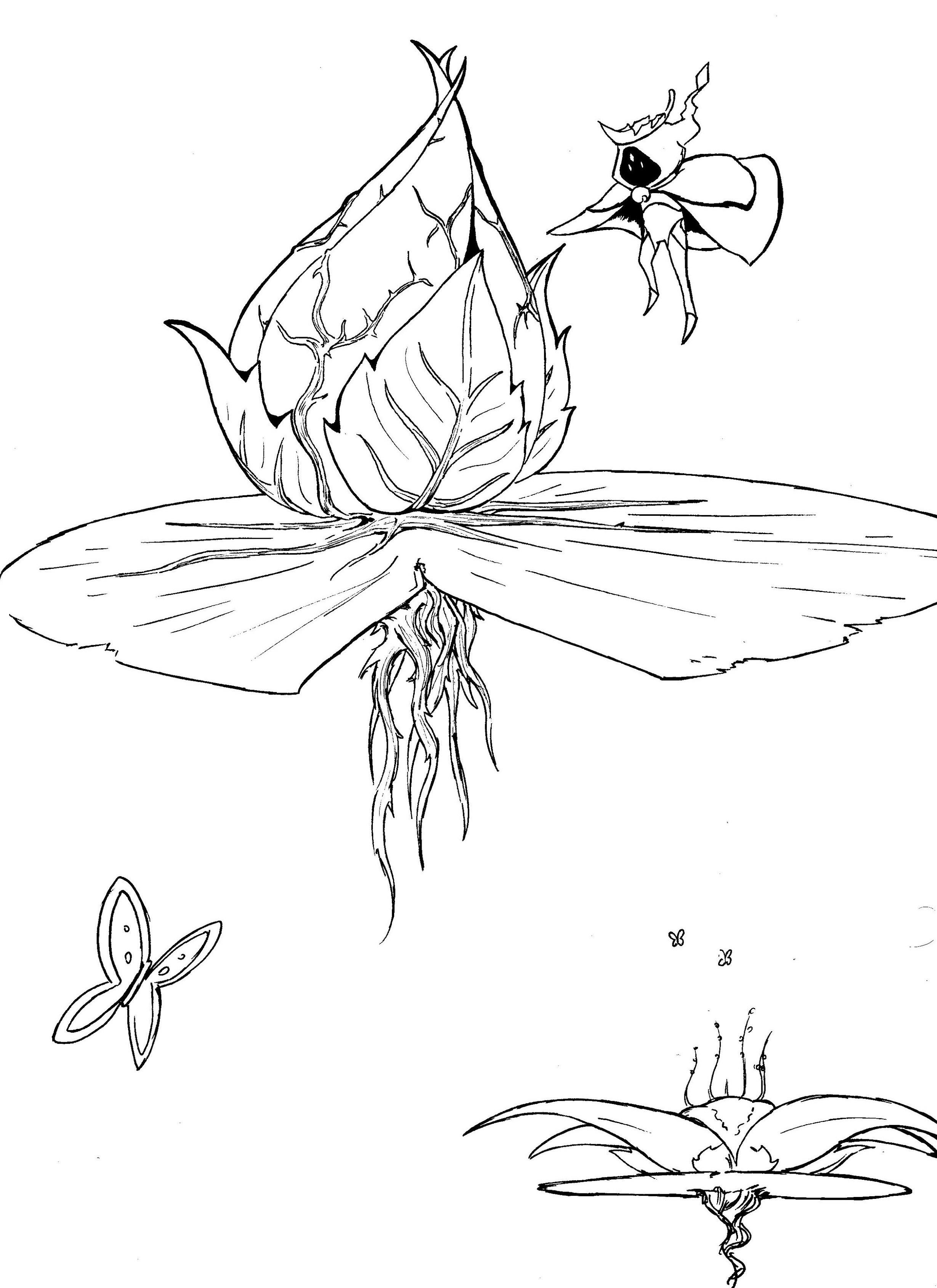 Lily+Pad.jpeg.jpg