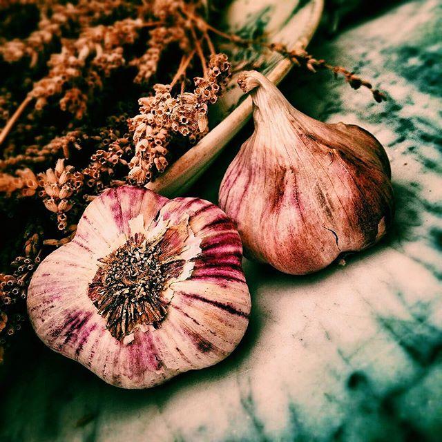 #foodjustice #garlic #foodforeveryone #spring