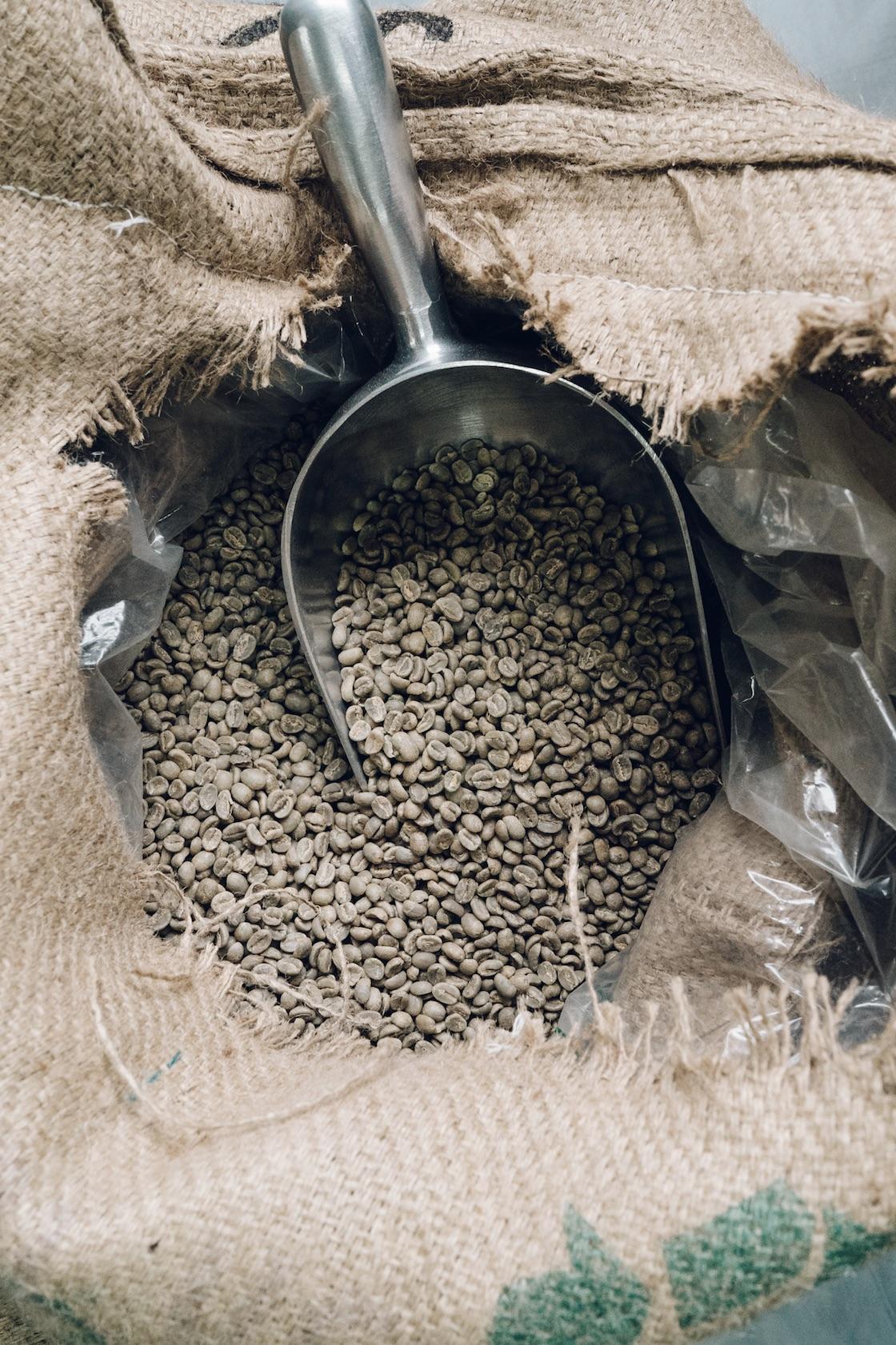 canadian-roasting-society-green-coffee-storage