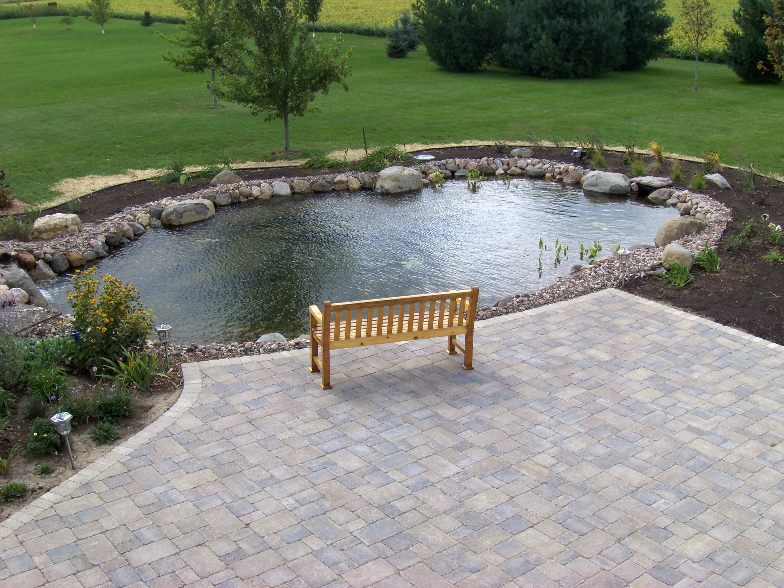 Ponds add an entirely new dimension of fun to your home and yard