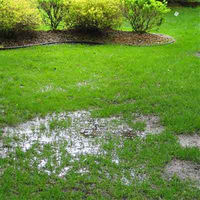 When normal rainfall leaves areas of the lawn unusable it's time to take steps for improving drainage.