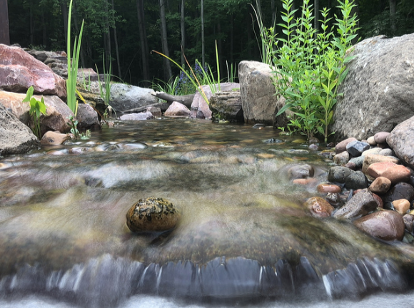 5 Landscape Design Ideas for Incorporating Water Features in Madison, WI