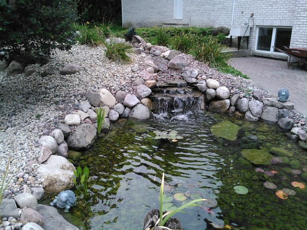 Include Sustainability in Your Cottage Grove, WI, Landscape Design