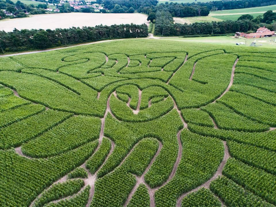 2017 Owl Hundred River Maize Maze