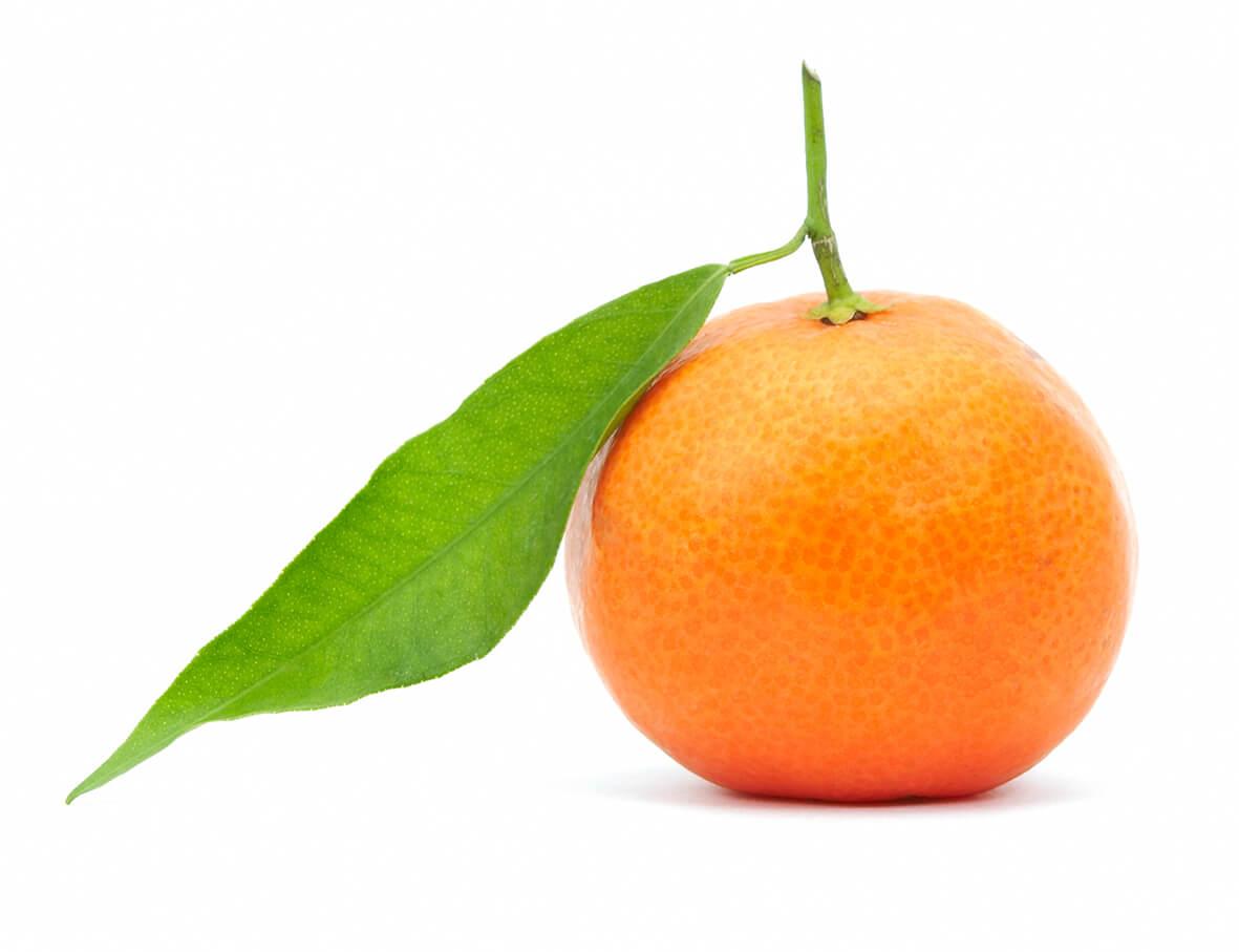 Mandarin_S_1.jpg