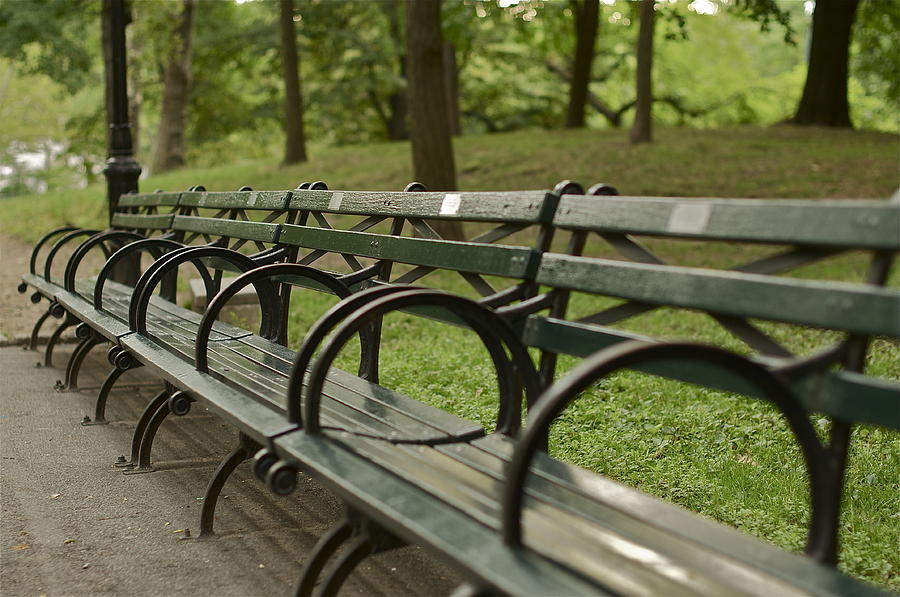 central-park-bench-bill-carson.jpg