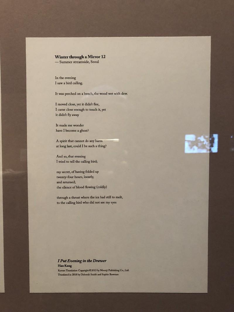 11.jpeg