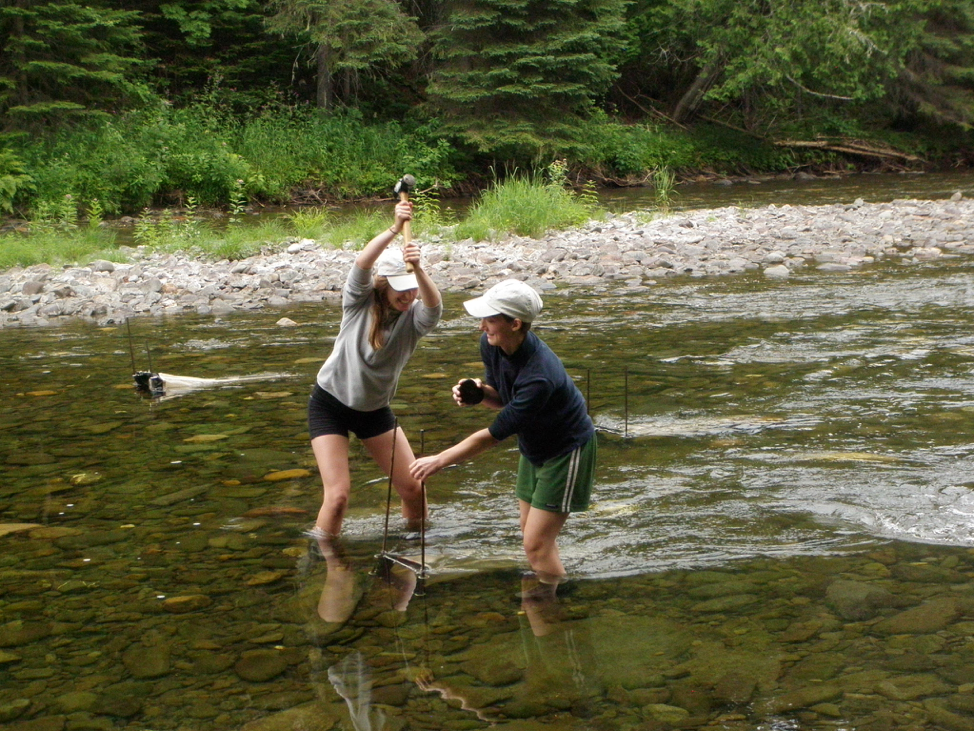 Students working together to deploy drift nets upstream of Didymo blooms.