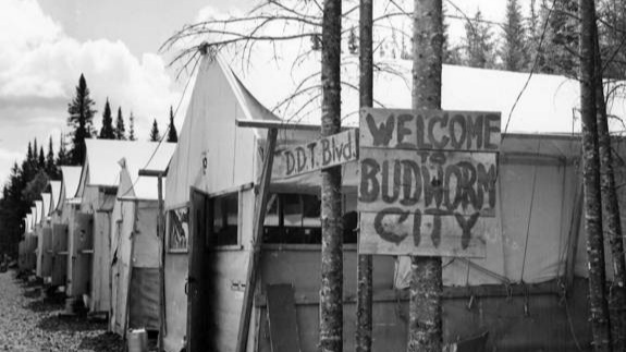 "Budworm City. ""Budworm City"" was established in the early 1950s near Upsalquitch Lake and used as a base for DDT spray operations in northern New Brunswick. Photo credit: D.C. Anderson."