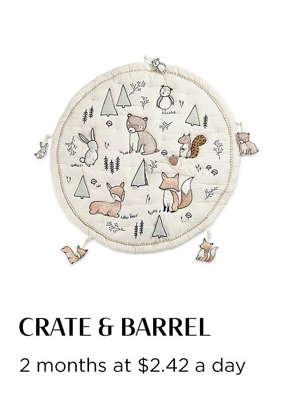 Reel_Soothe&Play_Product_Crate&Barrel.jpg