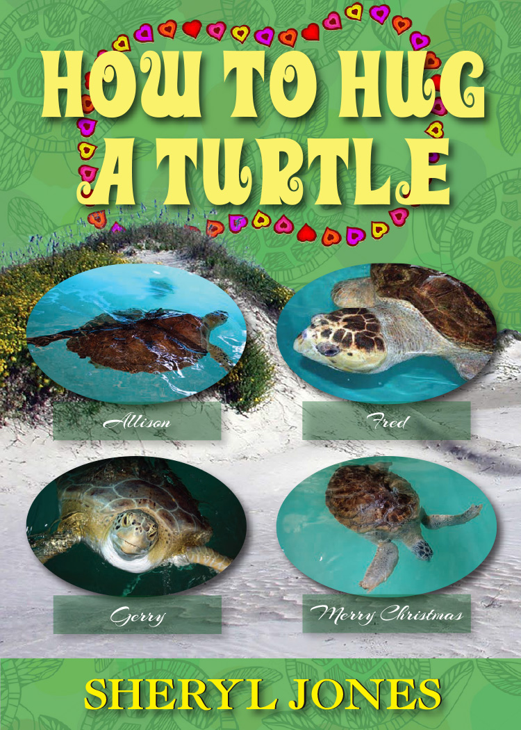 How to Hug a Turtle - The story of two little girls who learn how turtle hugs really work.