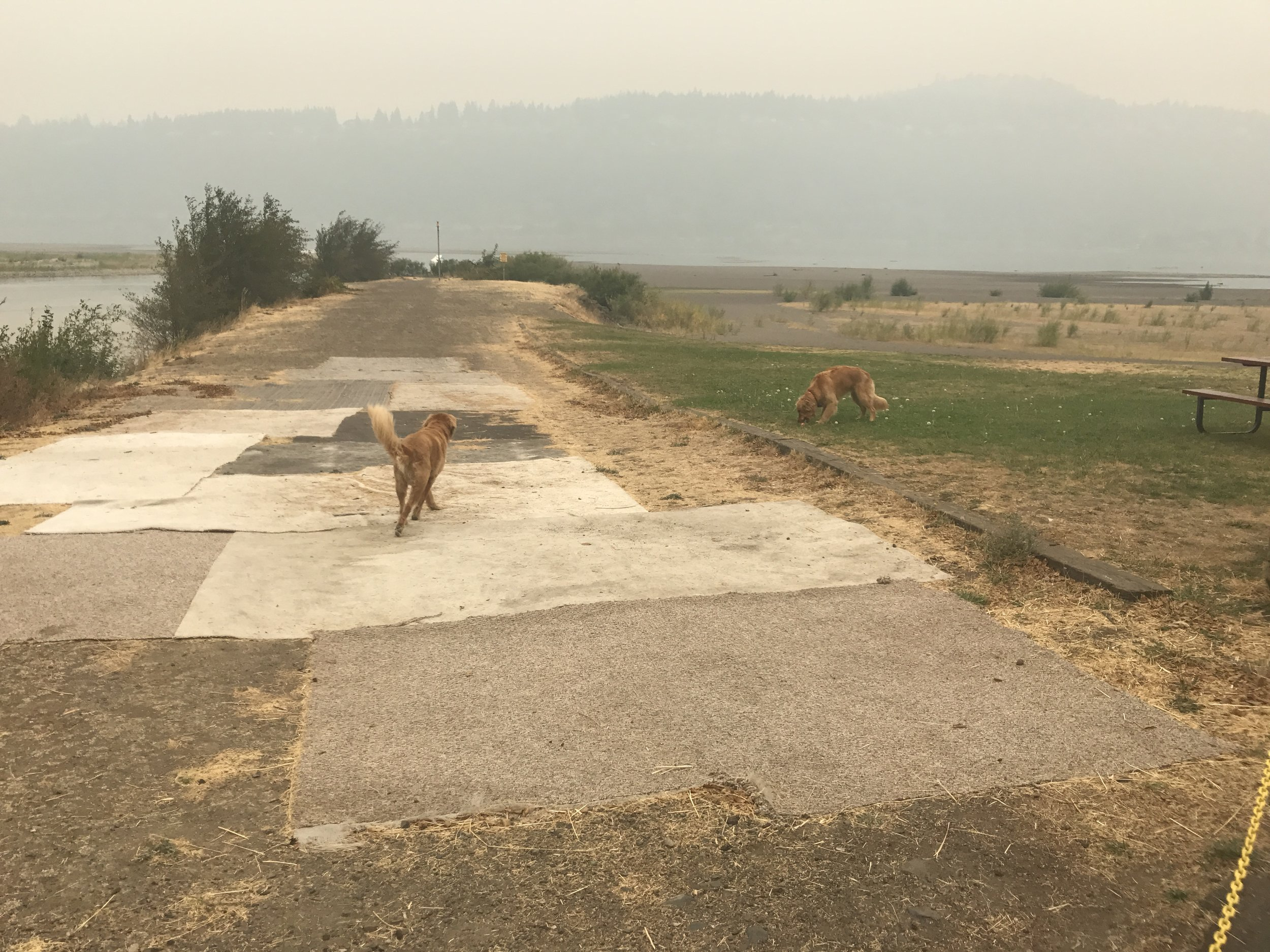 Calvin, Hobbes, and Washington across a smokey Columbia River