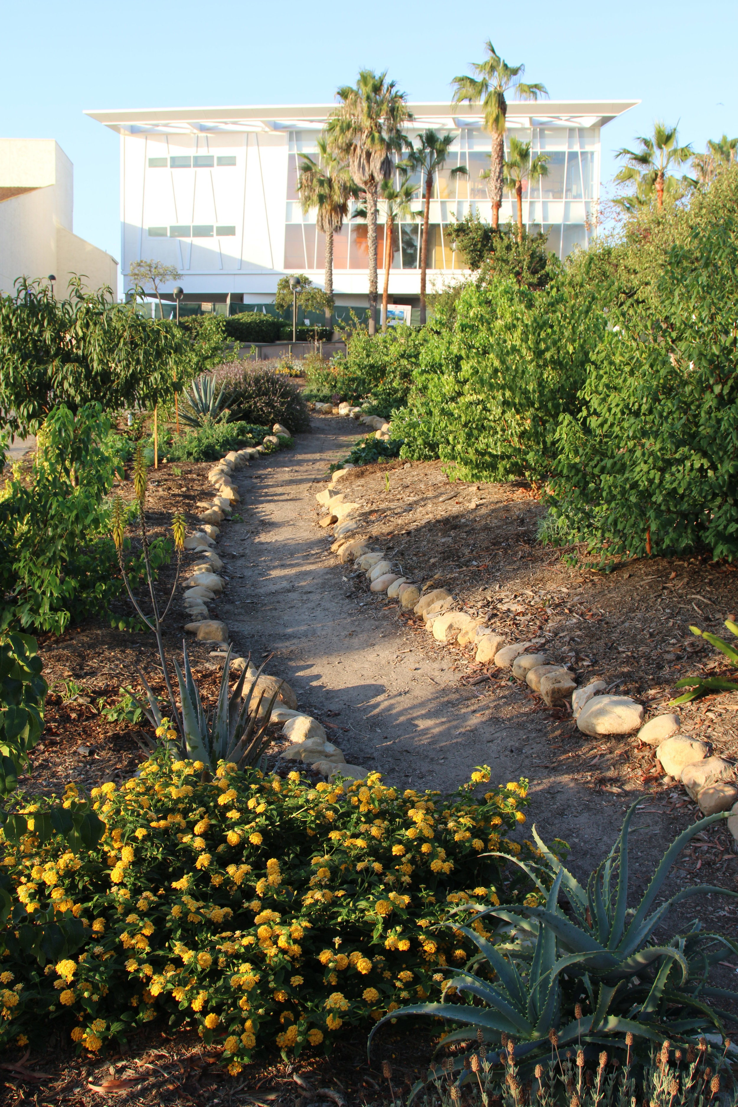 WCC perm garden.jpg