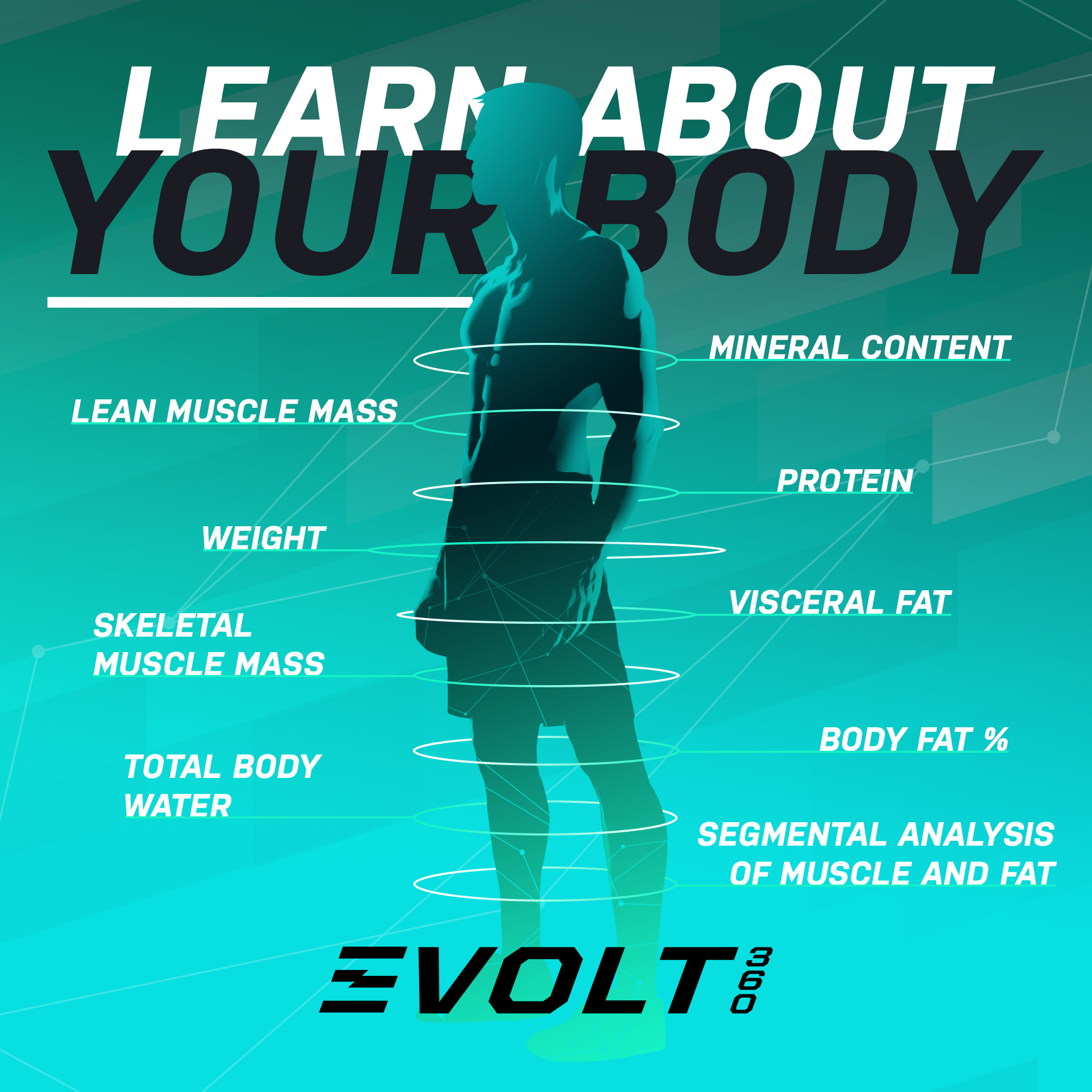 Learn-About-Your-Body_2.jpg